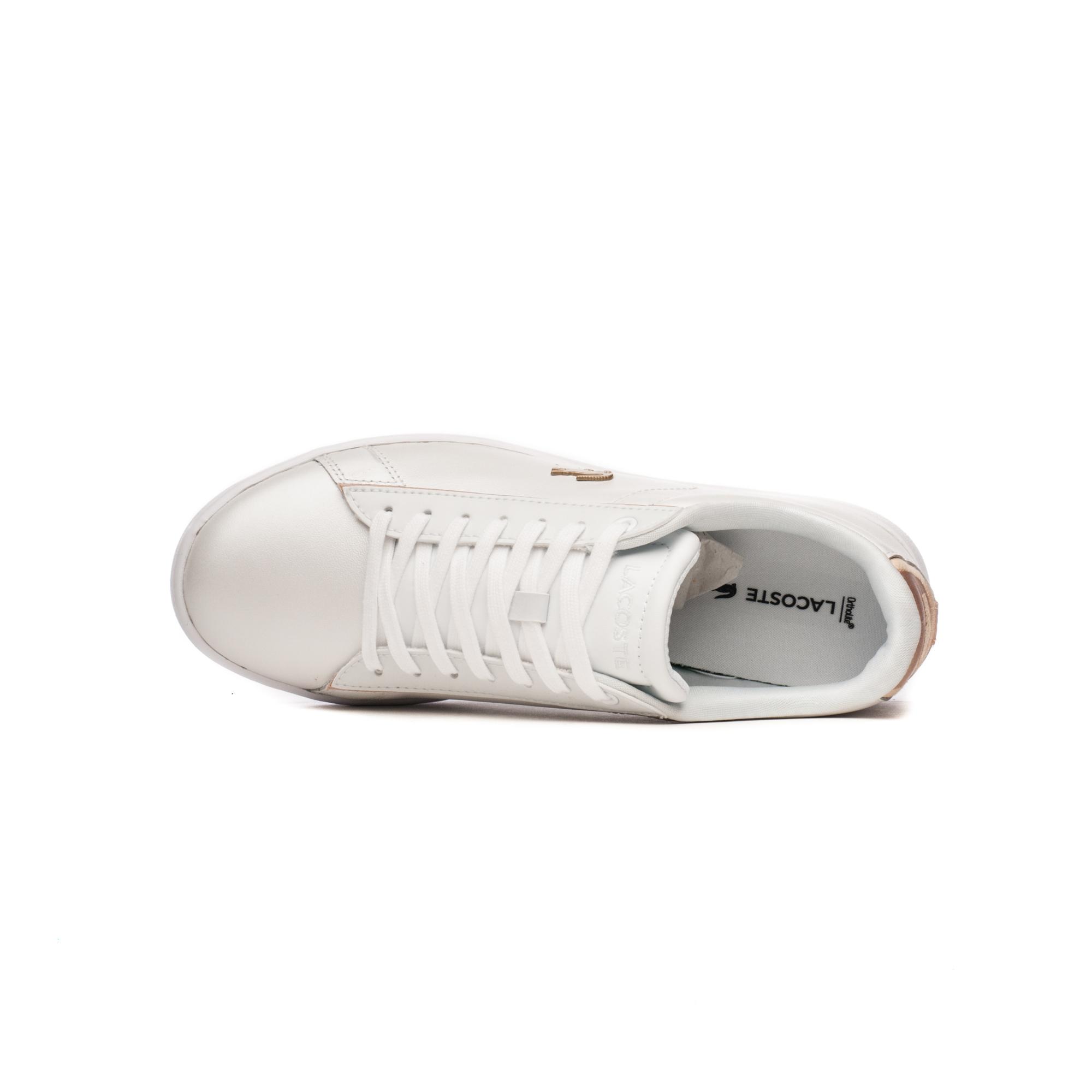 Кросівки жіночі Lacoste CARNABY EVO